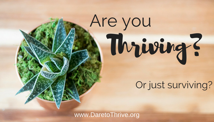 My Journey to Figuring Out What it Means to Thrive.
